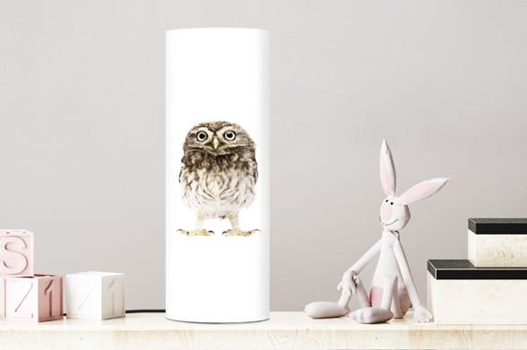 Lamp little owl